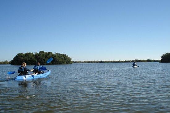 Ric Hinmans Lazy Days Kayak Tours:                   beautiful day for kayaking!