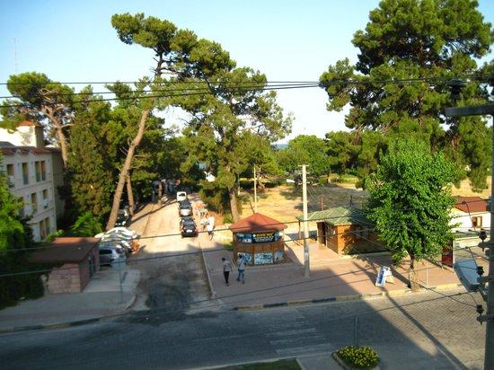 Endam Hotel:                   Вид из номера
