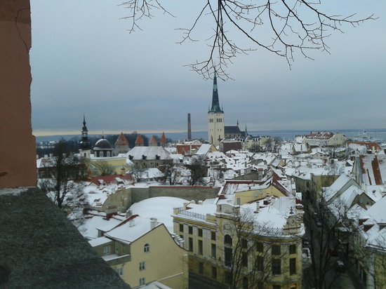 von Stackelberg Hotel Tallinn:                   Roof top old town