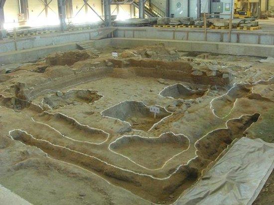 Miruksa Temple Site:                   解体現場を見学できます