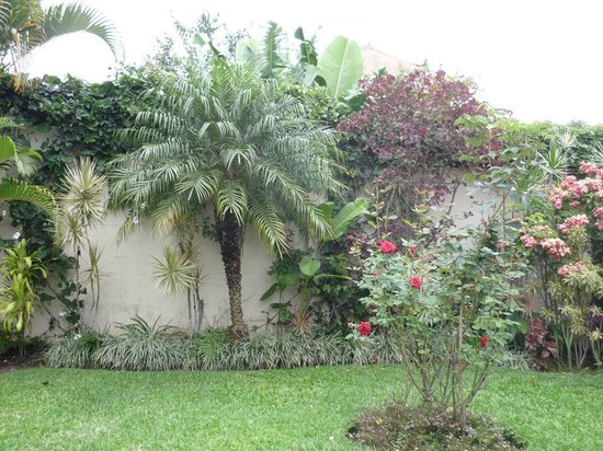 Casa Isabella Costa Rica:                   Casa Isabella - beautiful garden