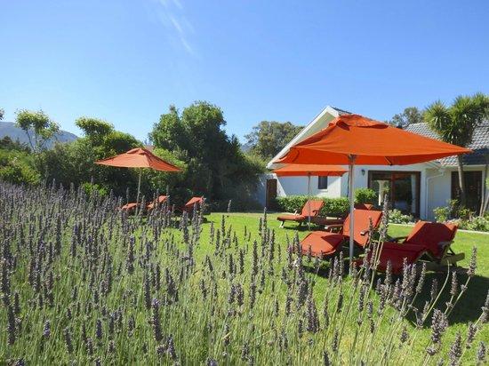 Dongola Guest House : Garden