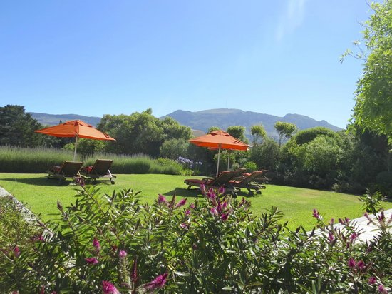 Dongola Guest House : Relaxing in the garden
