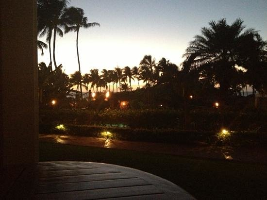 Grand Wailea - A Waldorf Astoria Resort:                   view from ground-level room on southwest side of hotel