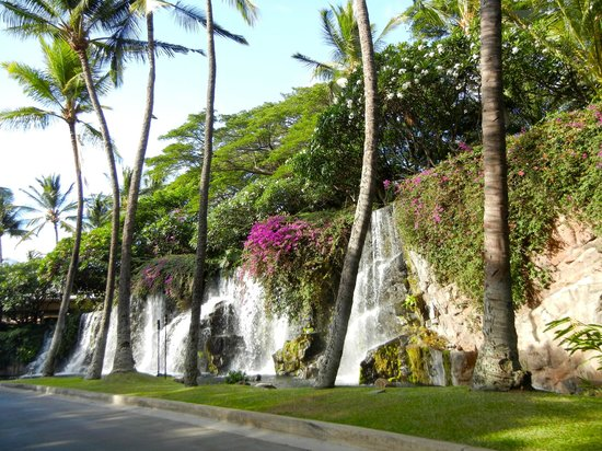 Grand Wailea - A Waldorf Astoria Resort :                   waterfall upon arriving at hotel entrance