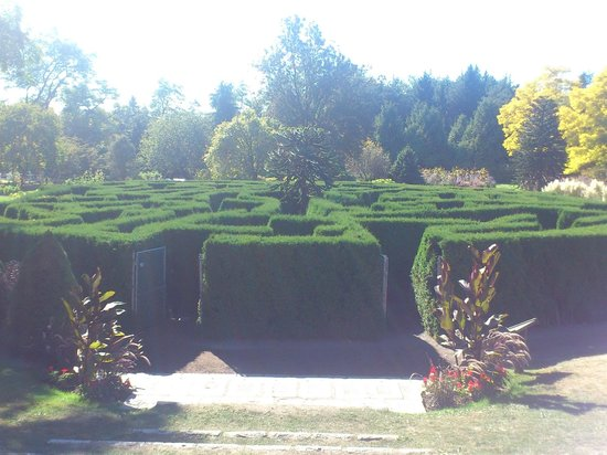 Vancouver Downtown:                   maze