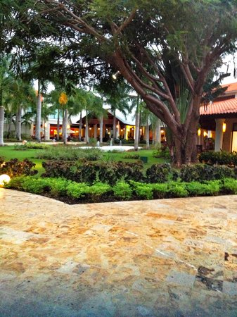 Dreams Palm Beach Punta Cana:                                     Home away from Home