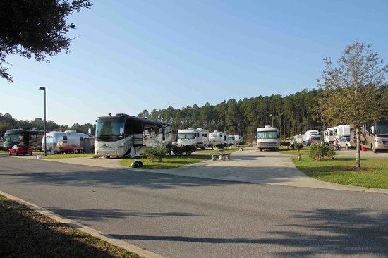 Pecan Park RV Resort: Pull through sites at Pecan Park