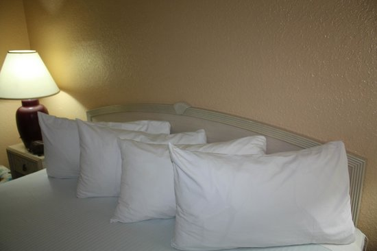 Travelodge Deltona:                   Comfy beds with the best pillows ever!