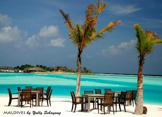 Anantara Dhigu Maldives Resort:                                     Having lunch right on the beach