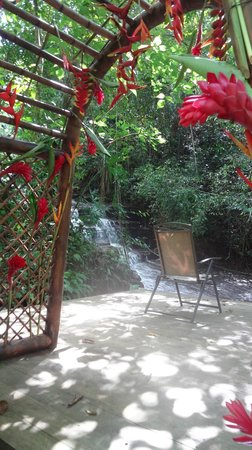 Cascadas Farallas Waterfall Villas:                   Waterfall Relaxation