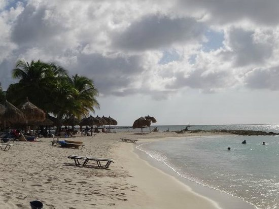 Divi Aruba Phoenix Beach Resort:                   Perfect Beach