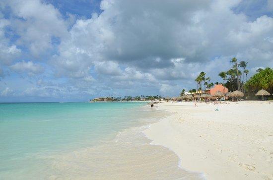 Tamarijn Aruba All Inclusive:                   spiaggia del resort