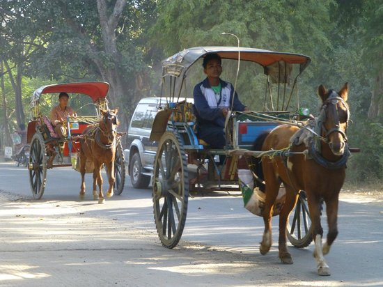 Bagan Princess Hotel : horse and cart