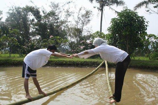 Pancawati, Indonésia:                   v balance
