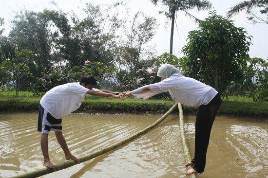 Pancawati, Indonesien:                   v balance