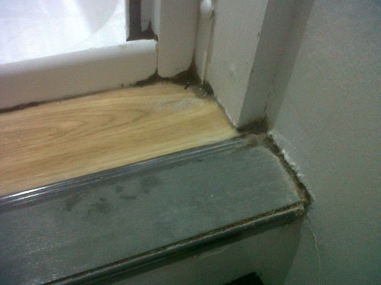 The Sun Hotel:                   Black mould on shower cubicle
