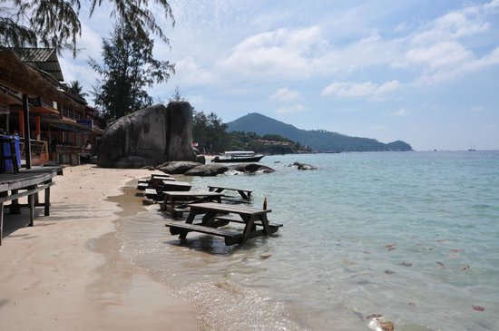 Ban's Diving Resort: Strandbereich mit Beach Bar