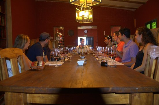 Ampora Wine Tours: Tasting at first vineyard