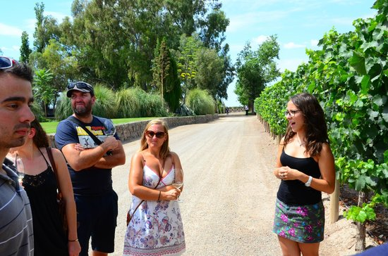 Ampora Wine Tours: Pulenta and our tour guide Amanda(?)