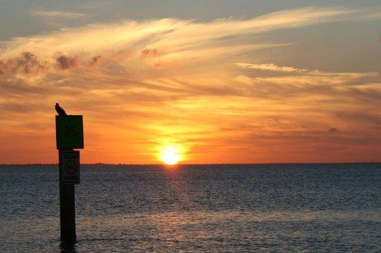 Southern Wave Sailing Charters :                   beautiful sunset