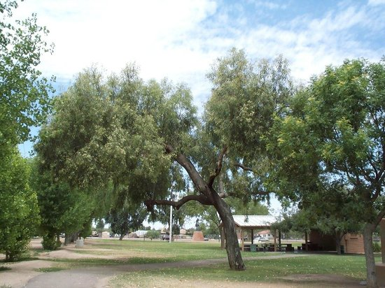 Fort Lowell Museum:                   Part of the park