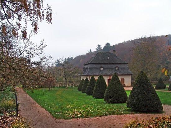 Kloster Eberbach:                                     il parco intorno monastero