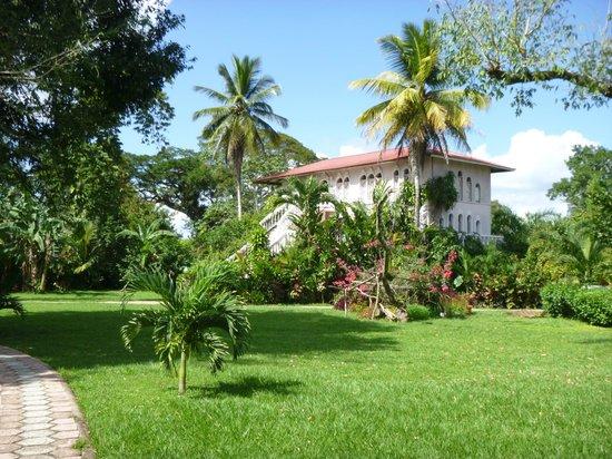 Banana Bank Lodge & Jungle Horseback Adventure:                                     Lodge building