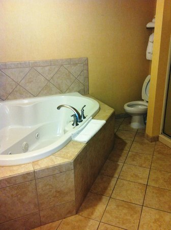 Comfort Suites West of the Ashley:                                     Huge jacuzzi tub, enough for two! Plus a separate full size