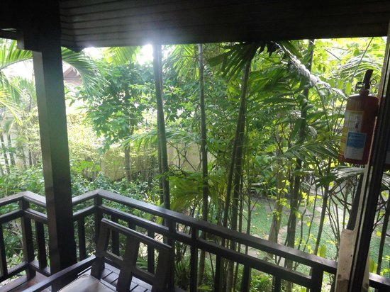 Nora Beach Resort and Spa:                   Overgrown dismal balcony view from villa room.