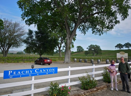 Peachy Canyon Winery :                   Peachy Canyon
