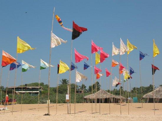 Candolim Beach:                                     wind