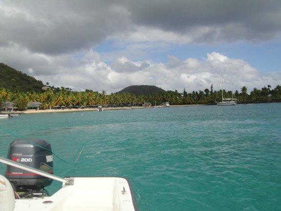 Curtain Bluff Resort: beach area