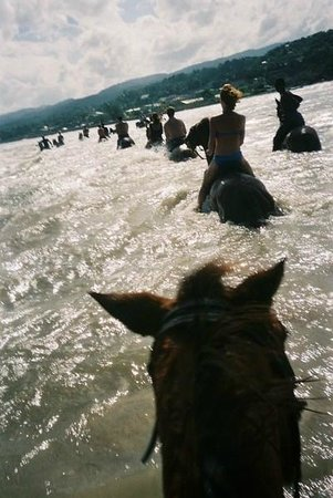 Royal Decameron Club Caribbean :                   Horse riding in the sea