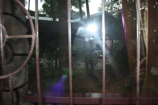 The L Resort Krabi:                   Aussicht aus dem Gefängnis-Bungalow