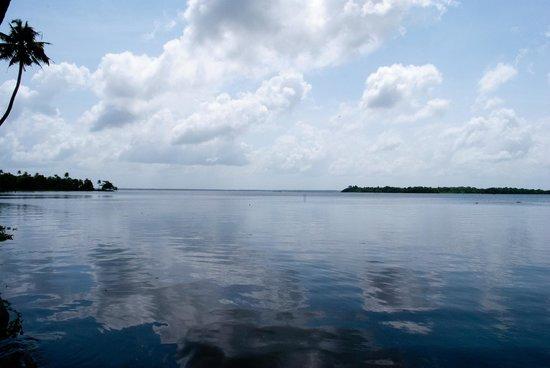เลมอน ทรี เว็มบานาด เลค รีสอร์ท มูฮัมมา:                   Vembanad Lake