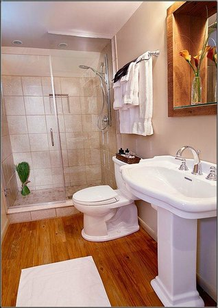 J. Palen House Bed & Breakfast: Studio Bath
