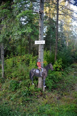 Bruce Bay Cottages: Quaint signs mark attractions on the island