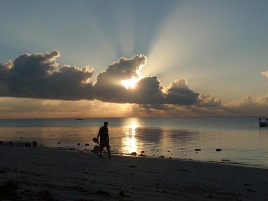 Eden Village Watamu Beach:                   l'alba