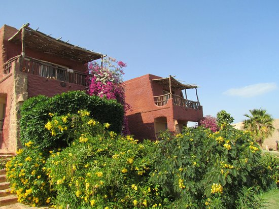 Kahramana Beach Resort:                   Houses