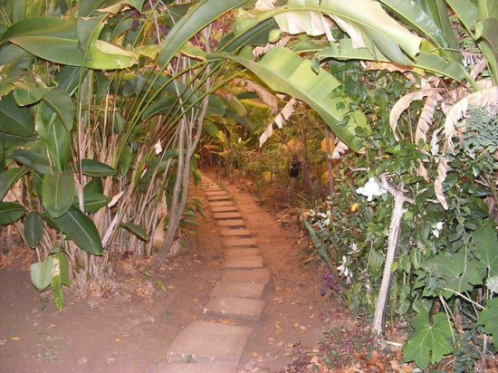 Elephant Valley Eco Farm Hotel:                   pathway
