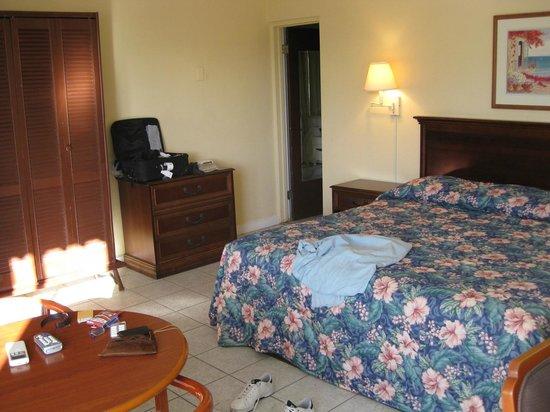 Holger Danske Hotel:                   room