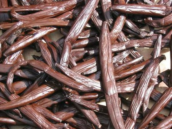 Island Eco Tours - Day Tours : Dried Vanilla
