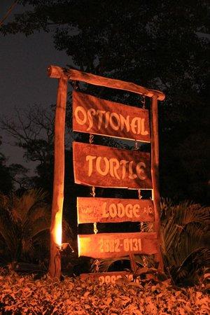 Ostional Turtle Lodge: Turtle lodge