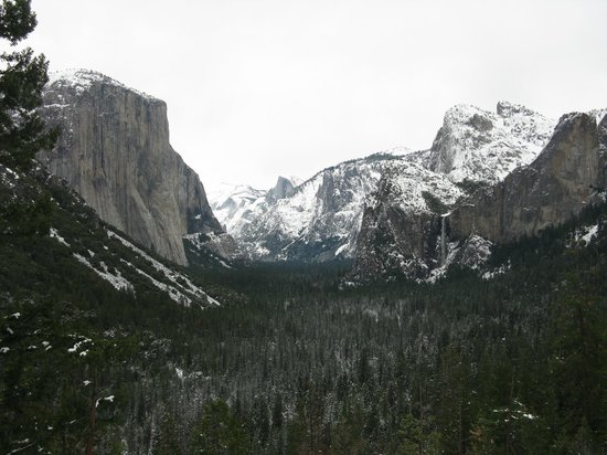 The Majestic Yosemite Hotel:                   Tunnel View