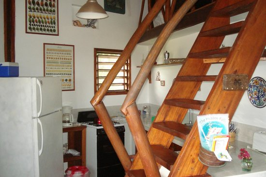Colibri House:                                     Stairs going up to loft