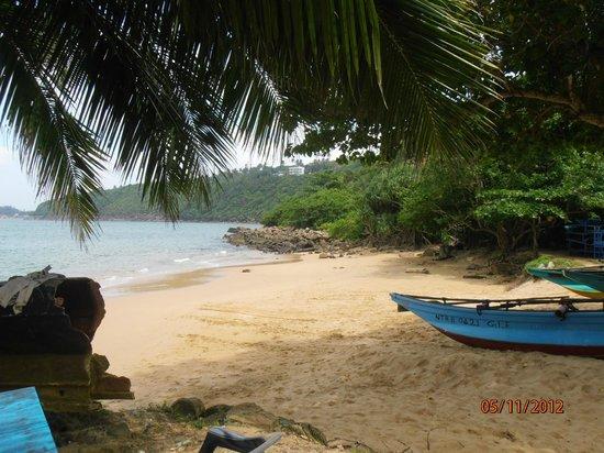 Elite Tours Sri Lanka Jungle Beach