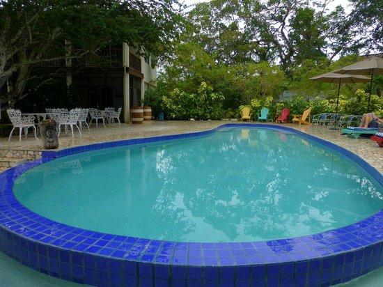 Black Orchid Resort: Swimming Pool