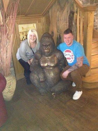 Pen y Cae Inn:                                     the gorilla in side