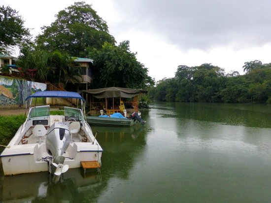 Black Orchid Resort: Resort Dock and river view